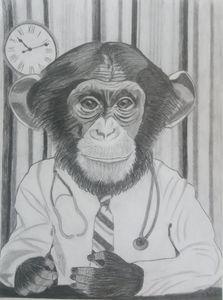 Le singe, docteur.