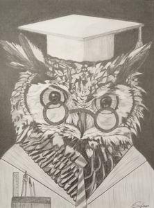 Le hibou, professeur de mathématique