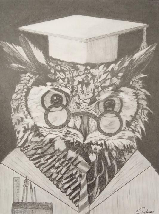 Le hibou, professeur de mathématique - Gweno