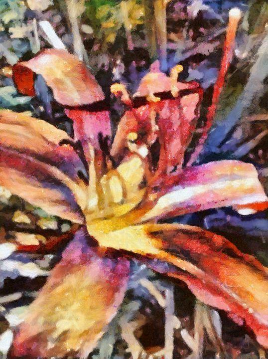 Lily - Carol-Ann Taillefer