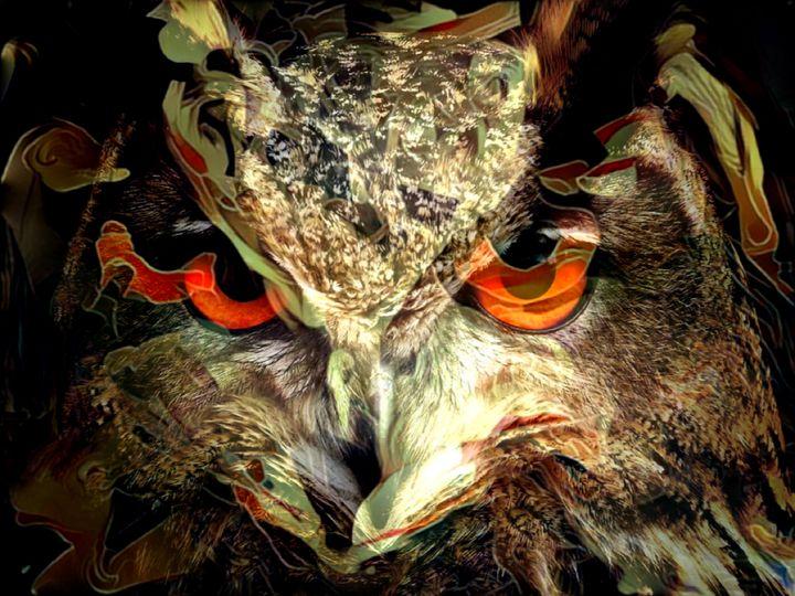 The owl 2 - Carol-Ann Taillefer