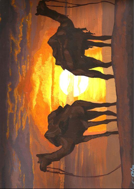 camels in desert - otman