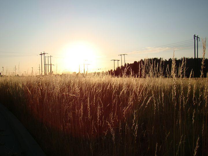 Sunset field - Joe Snyder