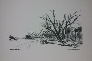 Original Botany Bay Drawing