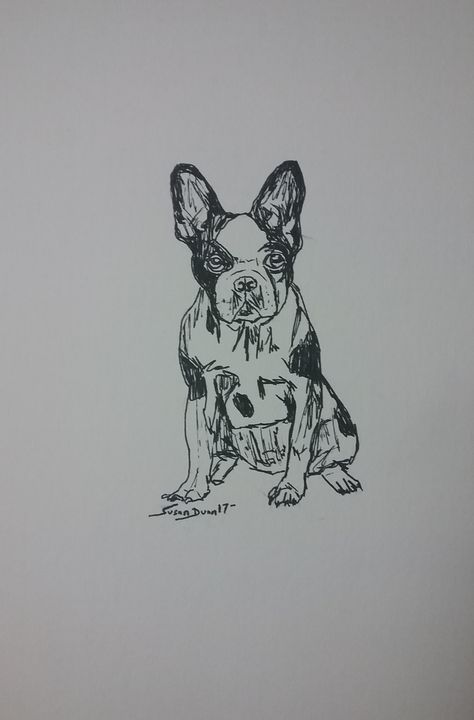 Original French Bulldog Drawing - Susan Dunn