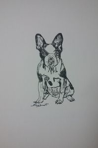 Original French Bulldog Drawing