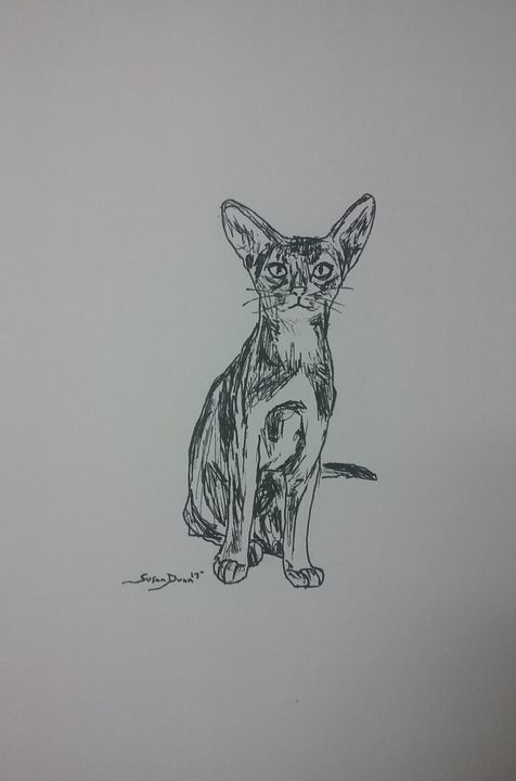 Original Cat Pen and Ink Drawing - Susan Dunn