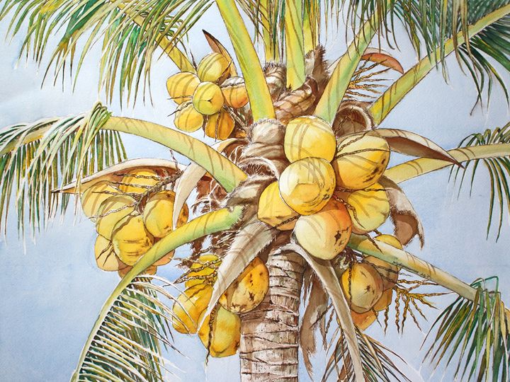 Coconut Tree IV - Jelly's Arts