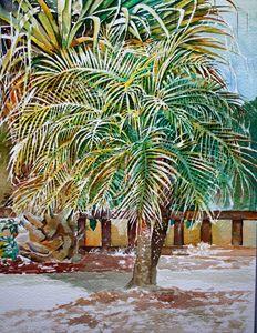 Palm Tree - Jelly's Arts
