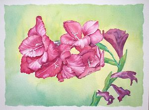 Red Gladiola - Jelly's Arts