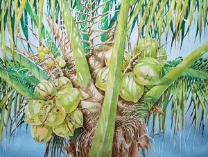 Coconut Tree V - Jelly's Arts