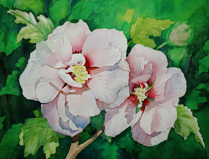 Pink Hibiscus II - Jelly's Arts
