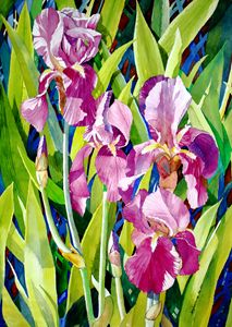 Spring Queen - Gladiola - Jelly's Arts