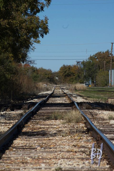 The Tracks - Big Daddy H Photo