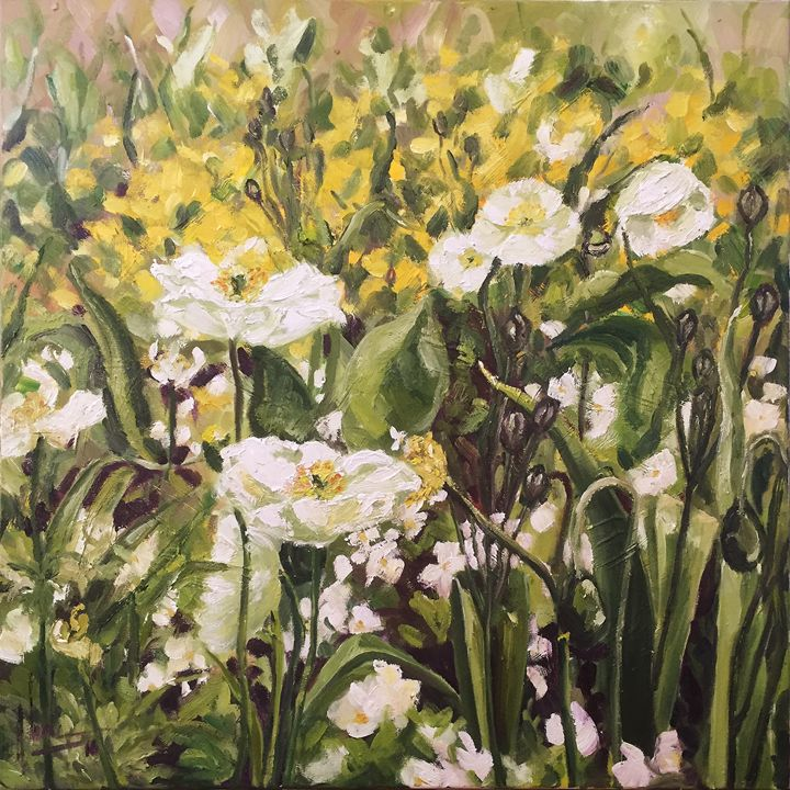 White Poppies From Giverny Garden - HoaLeArt