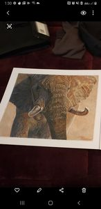 Elephant - Taylor Designs