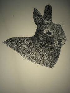 pen and ink bunny