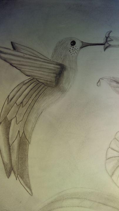 Hummingbird - Welcome to the Jungle