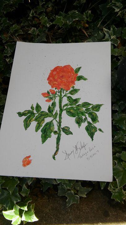 Cabbage Rose - Nancy's Botan Painting