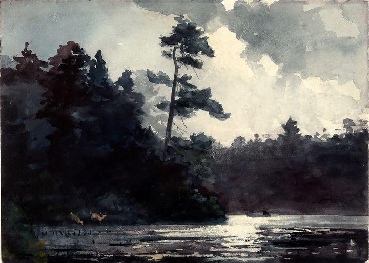 Adirondack Lake by Winslow Homer - Yvonne