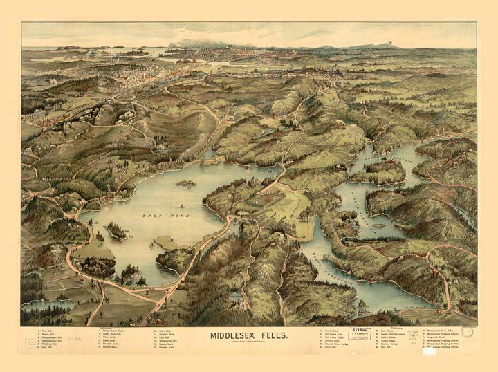 Middlesex Fells, Massachusetts (1903 - Yvonne