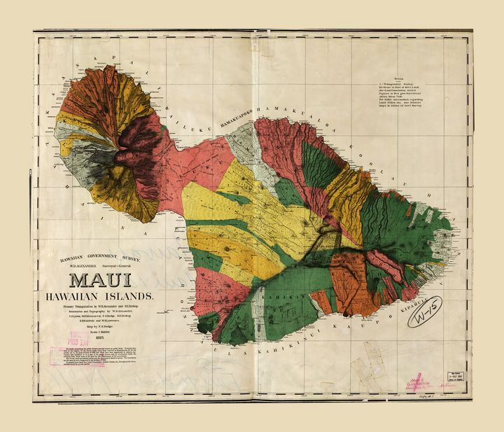 Map of Maui, Hawaiian Island (1885) - Yvonne
