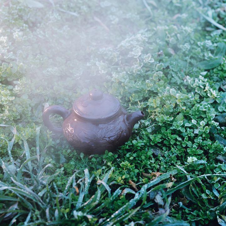 hot kettle on grass - MorozV