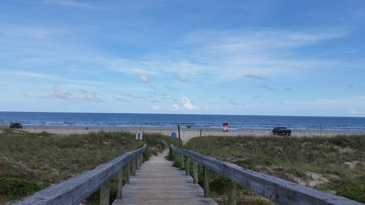 Walkway to Paradise - Aaryn Buckholtz