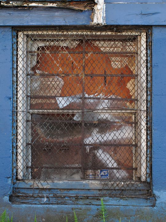 Mesh Window - R. A. Thompson Photography