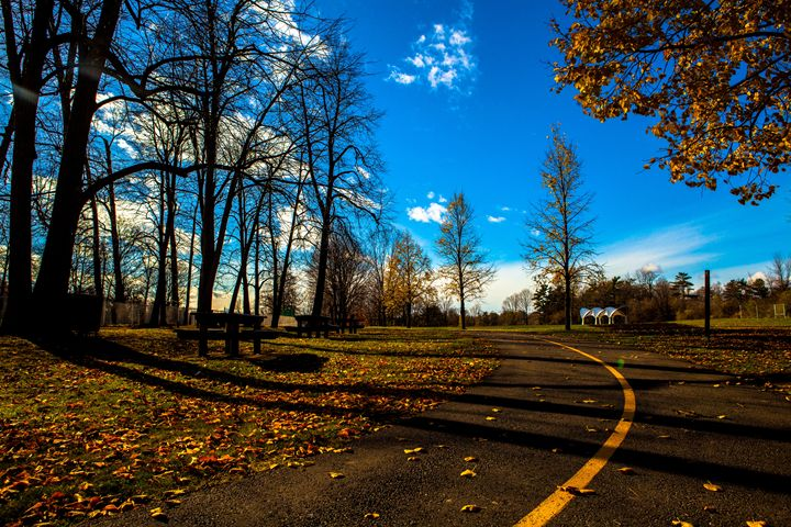 Autumn Walk - William Smith