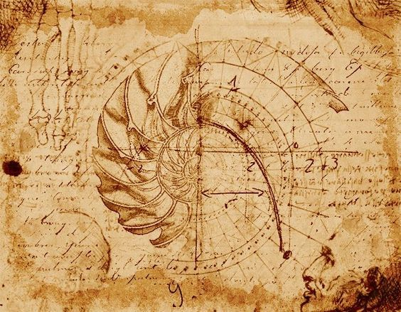 Leonardo da Vinci drafted art - Duchy renaissance