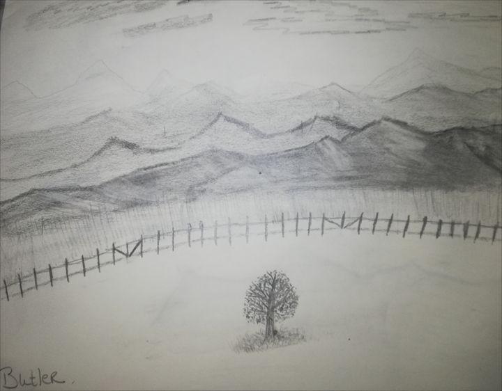 Lonely tree - Butler Art