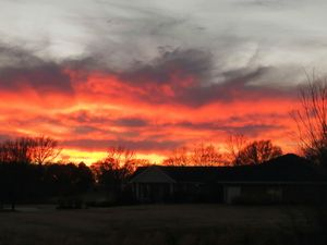 Arkansas December Sunset