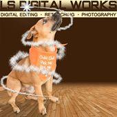 LS Digital Works