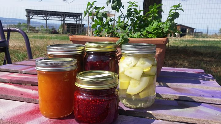 5 canning jars outside - CalicoPony Creations