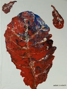 Ancient Fossilized Leaf(1)