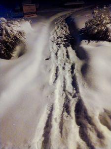 Snow Removel