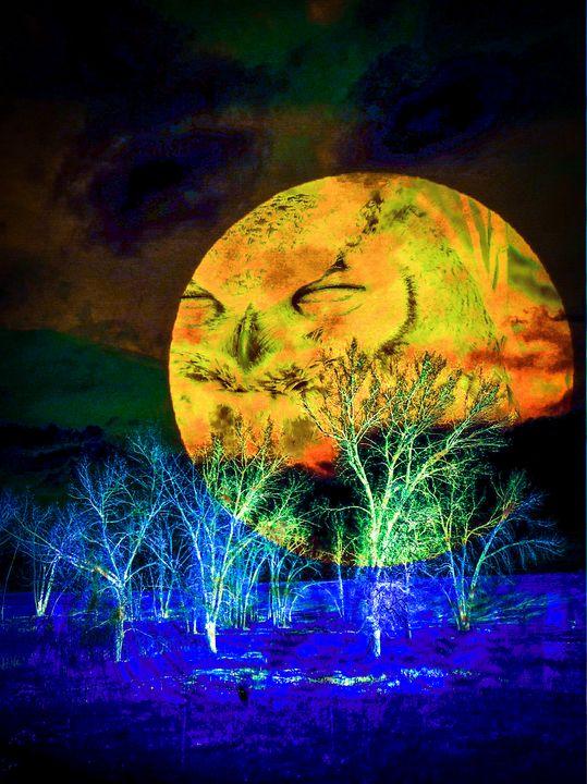 The Owls Moon - Chad Vidas Outdoors