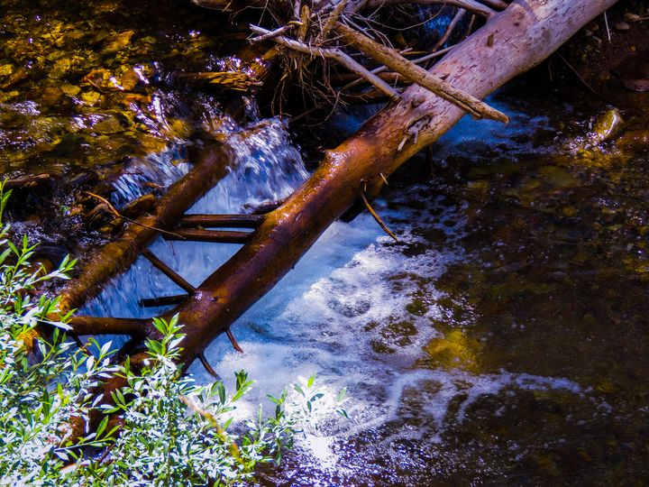 Colorado River - Chad Vidas Outdoors