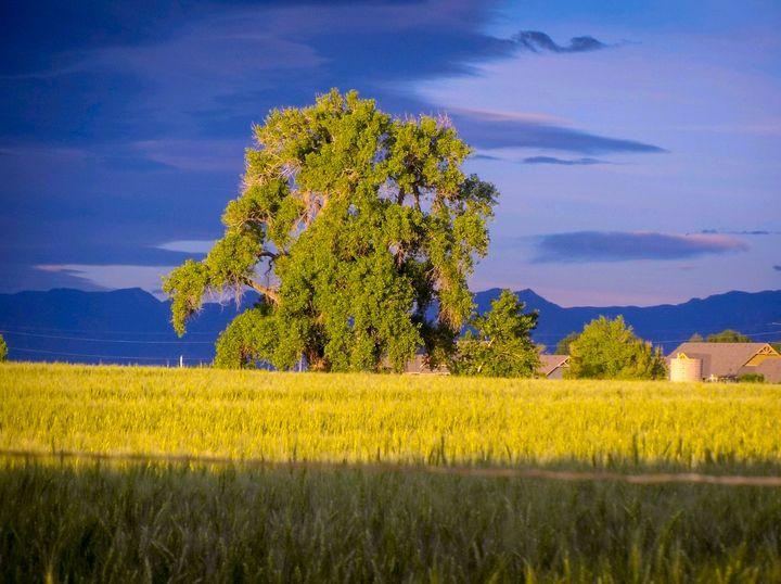 Longmont Colorado - Chad Vidas Outdoors