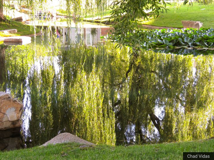 The pond reflection - Chad Vidas Outdoors