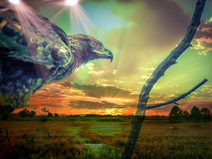 Golden Eagle - Chad Vidas Outdoors
