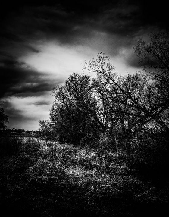 Stormy Black Days - Chad Vidas Outdoors