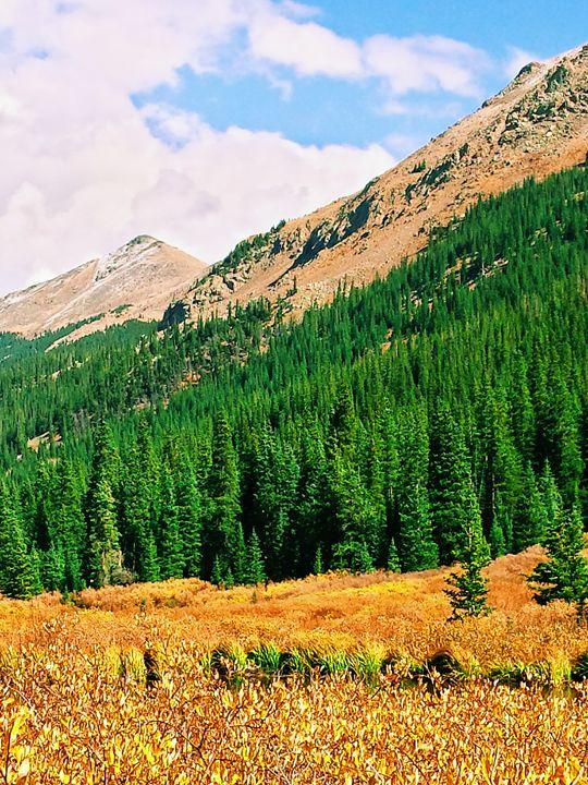 Colorado - Chad Vidas Outdoors