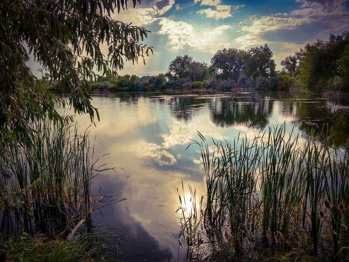 Big T Ponds - Chad Vidas Outdoors