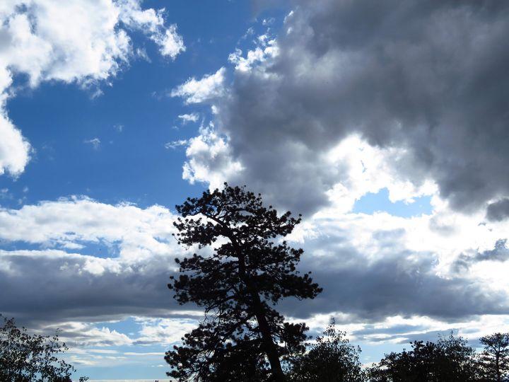 Colorado Splendor - Chad Vidas Outdoors