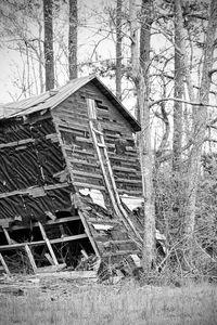 Tobacco Barn Falling Down
