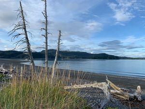 Homer Alaska beach