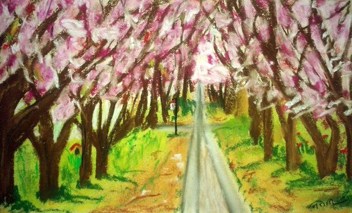 cherry blossom - Nirali