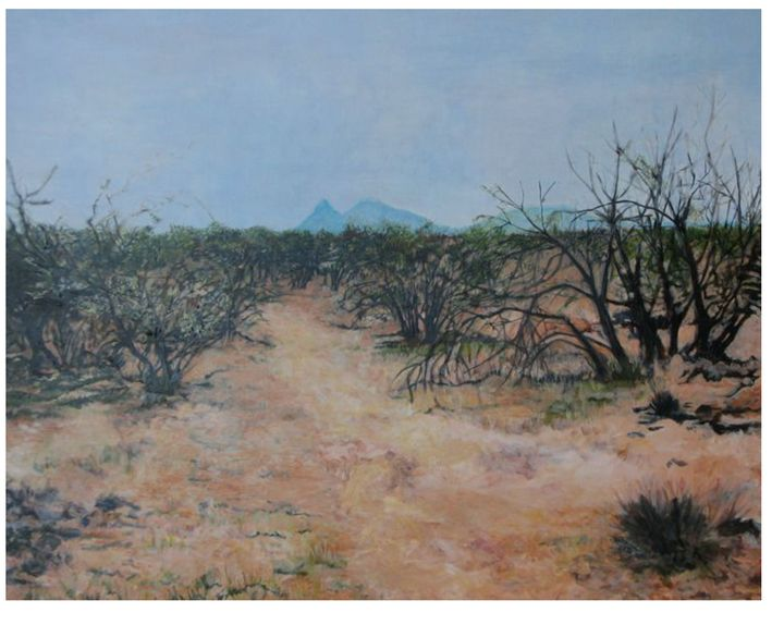 Looking South - Kate Walter
